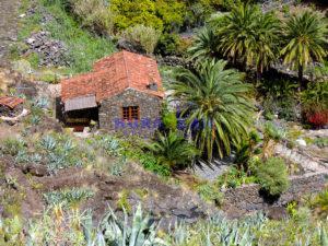 VENDIDA!!!CASA RURAL, en finca de 11.400 m2, totalmente aislada, ideal para confinarse-teletrabajar (wifi), de 56 m2, con tres terrazas empedradas de 105 m2 y 120 m2 de jardín, barbacoa, zona chilout, aparcamiento privado 80 m2 (4 coches), El Atajo, San Sebastián de La Gomera . REF. 505