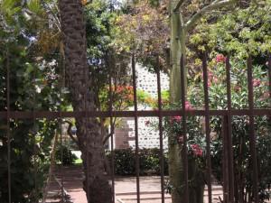 Local muy céntrico, con entrada por dos fachadas, 99 m2, con aseo, aire acondicionado. Calle Ruiz de Padrón, Nº 9. Junto Parque Torre del Conde. San Sebastián. Ref 324